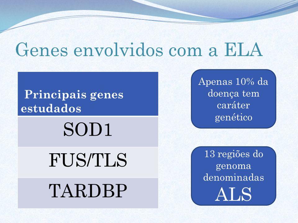 Genes envolvidos com a ELA Principais genes estudados SOD1 FUS/TLS TARDBP 13 regiões do genoma denominadas ALS Apenas 10% da doença tem caráter genéti
