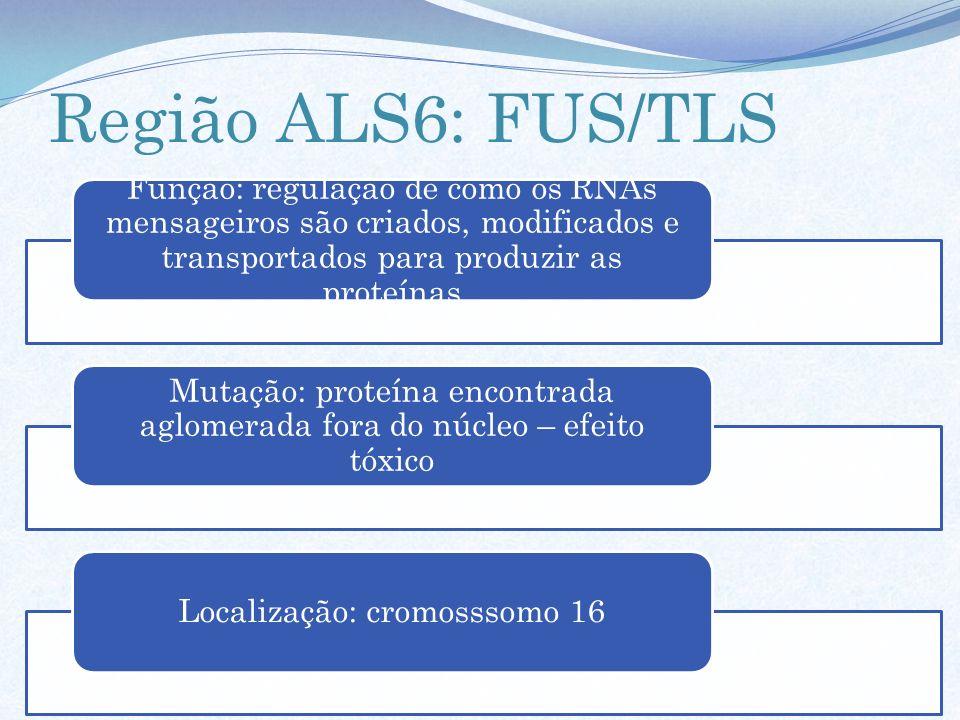 Região ALS6: FUS/TLS Função: regulação de como os RNAs mensageiros são criados, modificados e transportados para produzir as proteínas Mutação: proteí