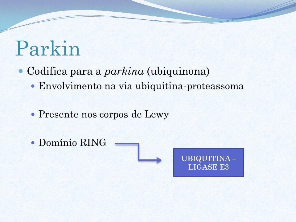 Parkin Codifica para a parkina (ubiquinona) Envolvimento na via ubiquitina-proteassoma Presente nos corpos de Lewy Domínio RING UBIQUITINA – LIGASE E3