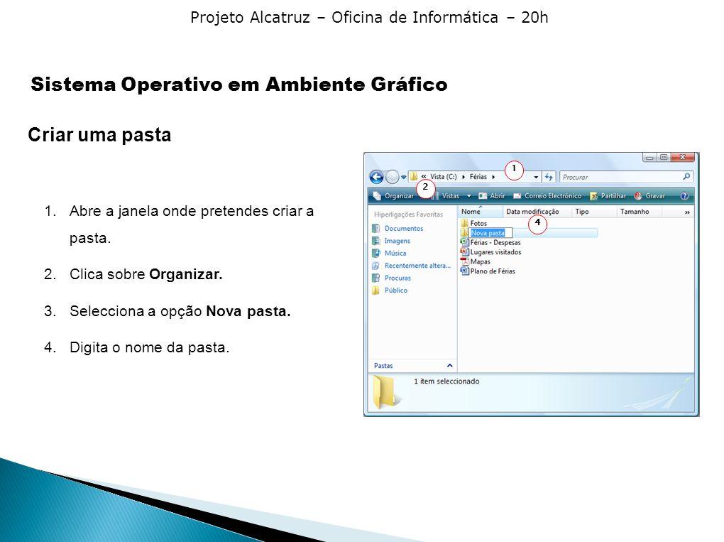Projeto Alcatruz – Oficina de Informática – 20h Criar uma pasta 1.Abre a janela onde pretendes criar a pasta. 2.Clica sobre Organizar. 3.Selecciona a