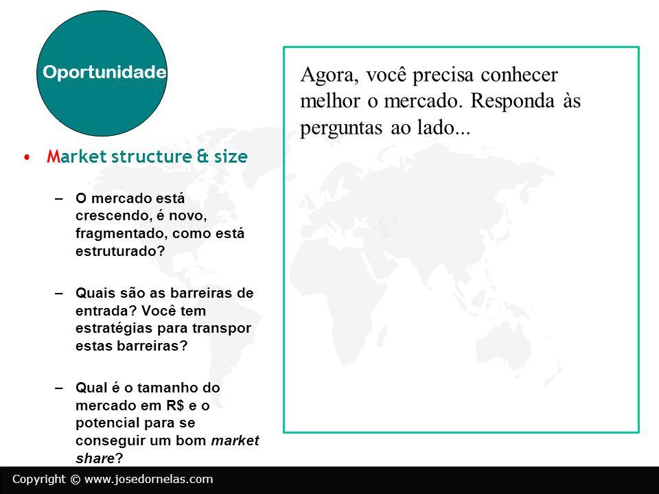 Copyright © www.josedornelas.com Market structure & size –O mercado está crescendo, é novo, fragmentado, como está estruturado? –Quais são as barreira