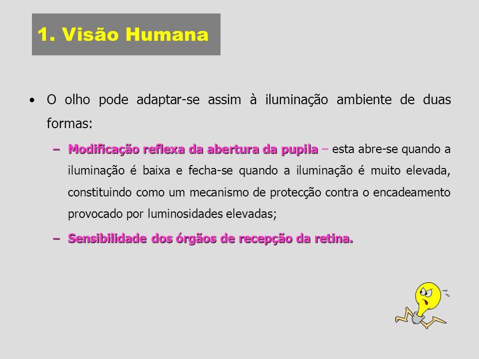 1. Visão Humana O olho pode adaptar-se assim à iluminação ambiente de duas formas: –Modificação reflexa da abertura da pupila –Modificação reflexa da