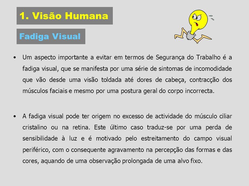 1. Visão Humana Um aspecto importante a evitar em termos de Segurança do Trabalho é a fadiga visual, que se manifesta por uma série de sintomas de inc