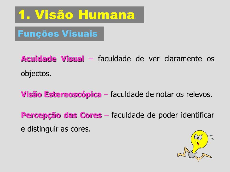 1.Visão Humana Acuidade Visual Acuidade Visual – faculdade de ver claramente os objectos.