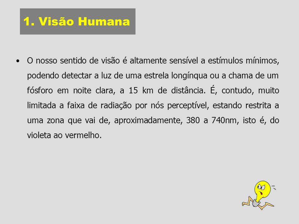 1. Visão Humana O nosso sentido de visão é altamente sensível a estímulos mínimos, podendo detectar a luz de uma estrela longínqua ou a chama de um fó