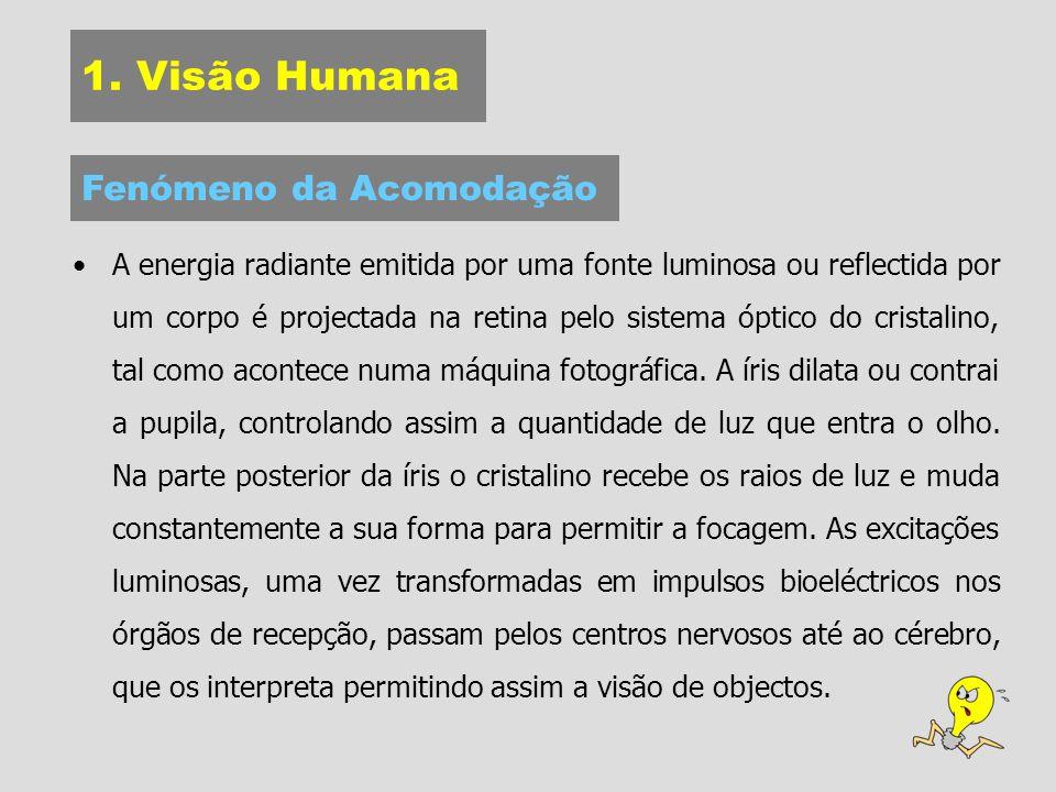 A energia radiante emitida por uma fonte luminosa ou reflectida por um corpo é projectada na retina pelo sistema óptico do cristalino, tal como acontece numa máquina fotográfica.