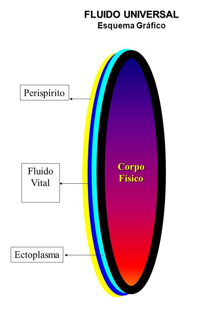 Perispírito FluidoVital Ectoplasma Ectoplasma CorpoFísico Perispírito Fluido Vital Ectoplasma FLUIDO UNIVERSAL Esquema Gráfico