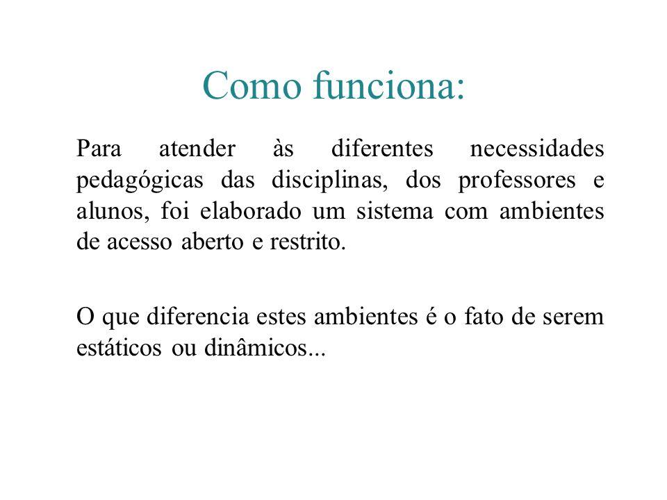 Como funciona: Para atender às diferentes necessidades pedagógicas das disciplinas, dos professores e alunos, foi elaborado um sistema com ambientes d