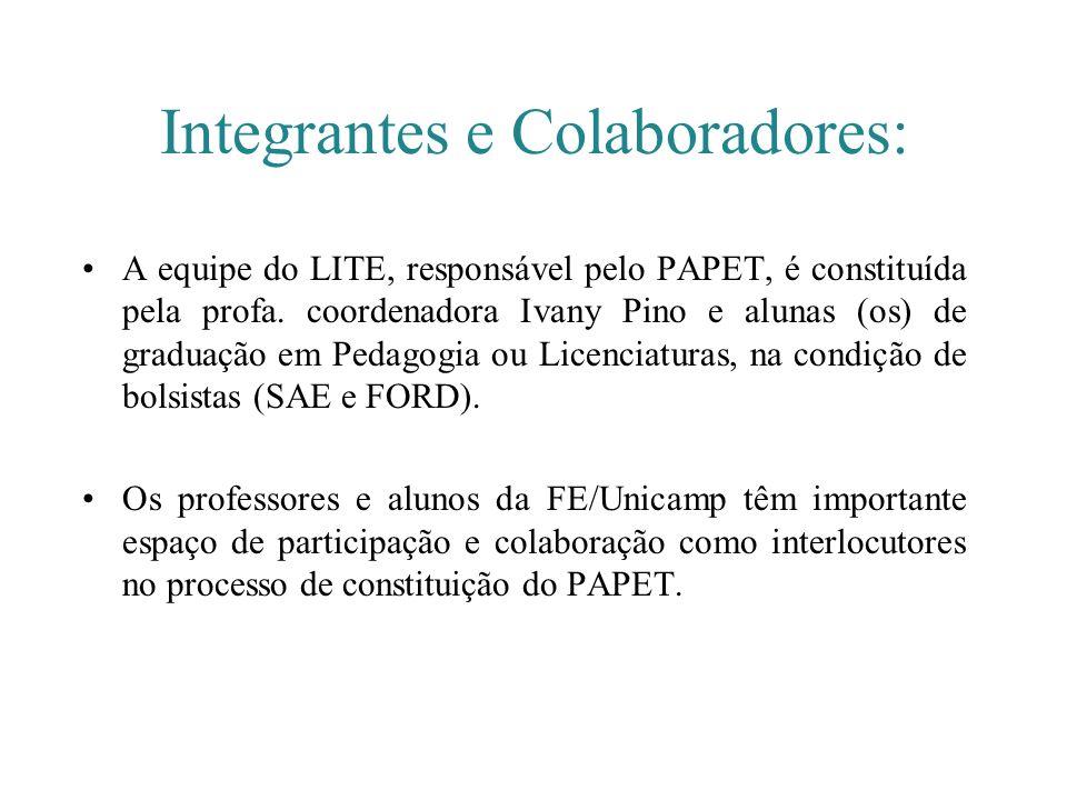 Integrantes e Colaboradores: A equipe do LITE, responsável pelo PAPET, é constituída pela profa. coordenadora Ivany Pino e alunas (os) de graduação em