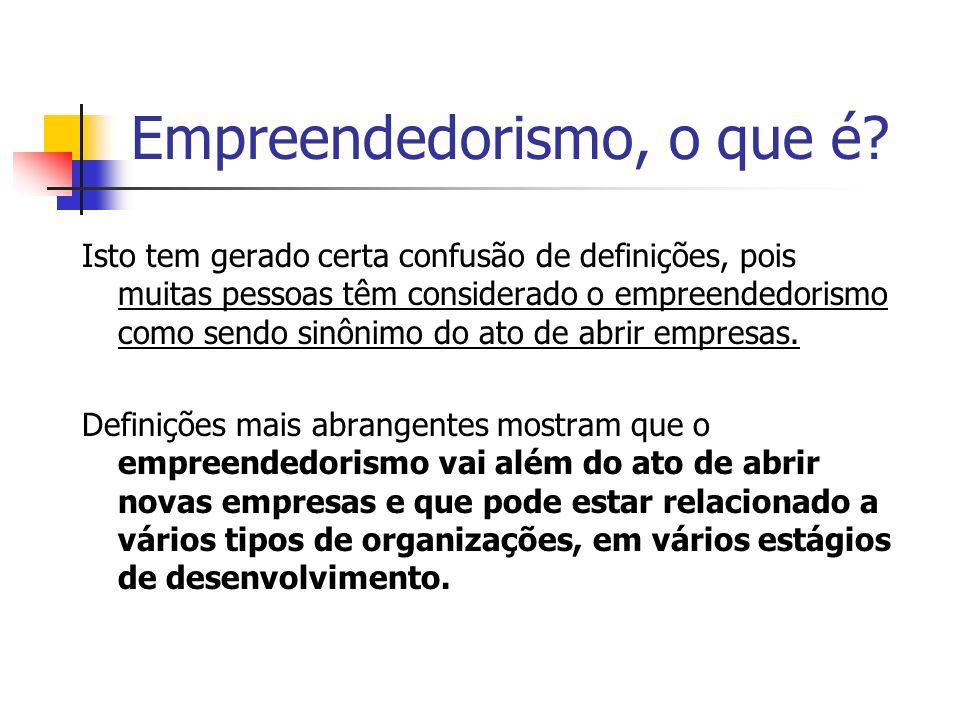 Empreendedorismo, o que é? Isto tem gerado certa confusão de definições, pois muitas pessoas têm considerado o empreendedorismo como sendo sinônimo do