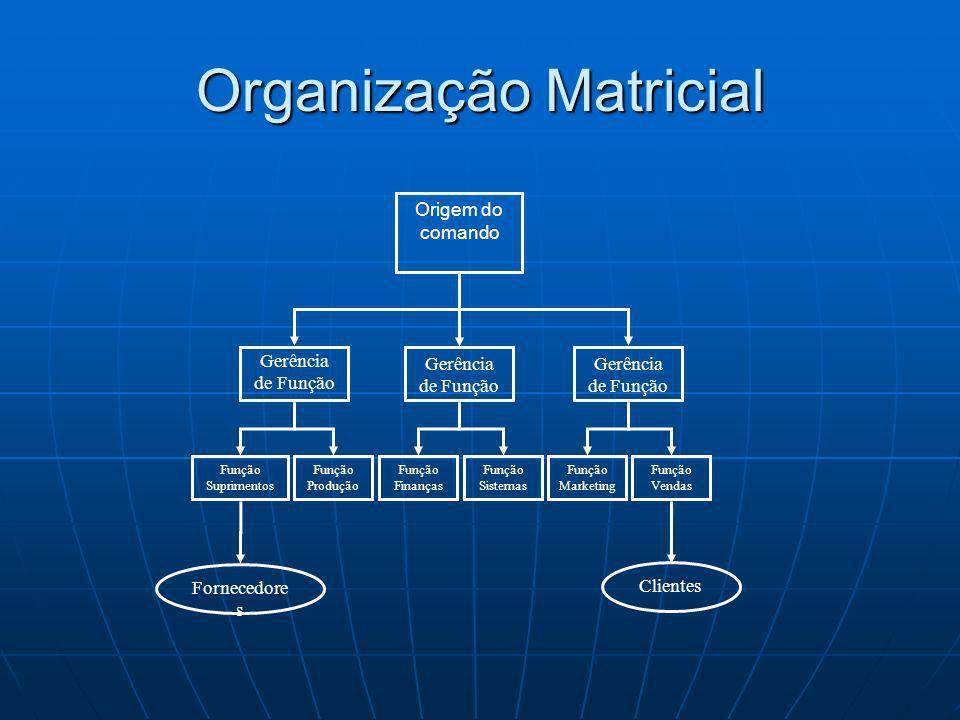 Organização Matricial Origem do comando Função Suprimentos Fornecedore s Clientes Gerência de Função Função Marketing Função Produção Função Sistemas