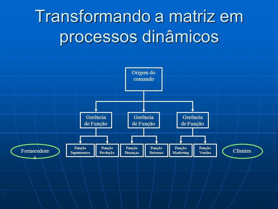Transformando a matriz em processos dinâmicos Origem do comando Função Suprimentos Fornecedore s Clientes Gerência de Função Função Marketing Função P