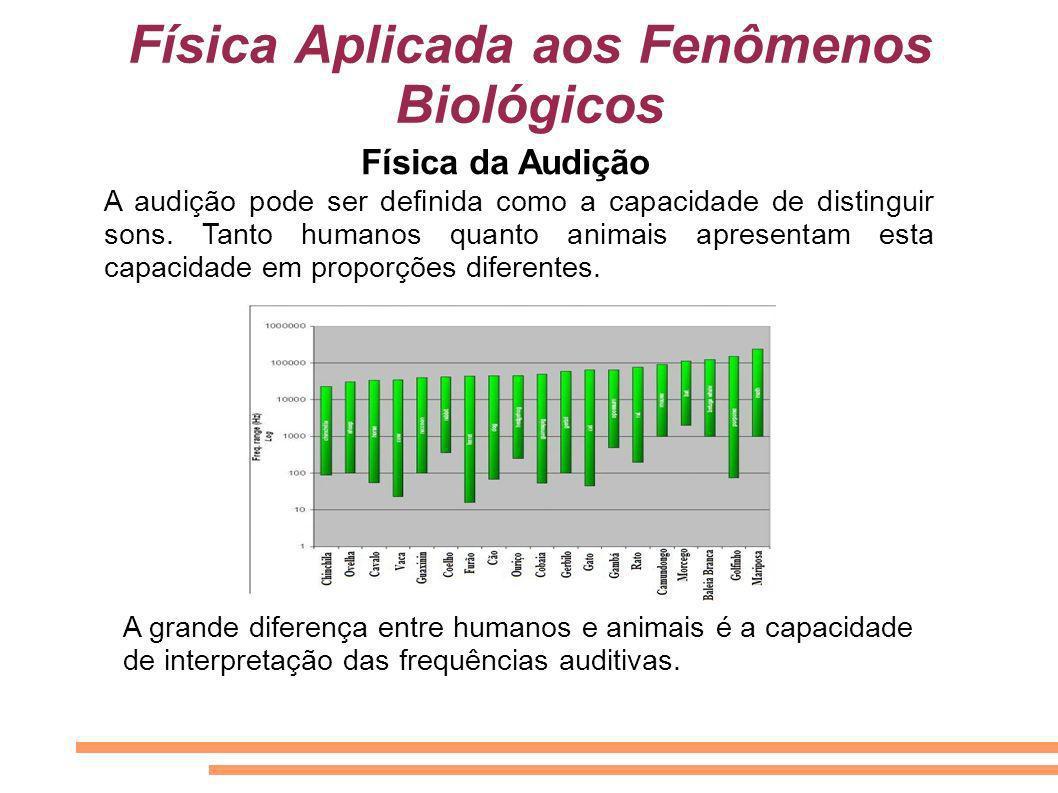 Física Aplicada aos Fenômenos Biológicos A audição pode ser definida como a capacidade de distinguir sons. Tanto humanos quanto animais apresentam est