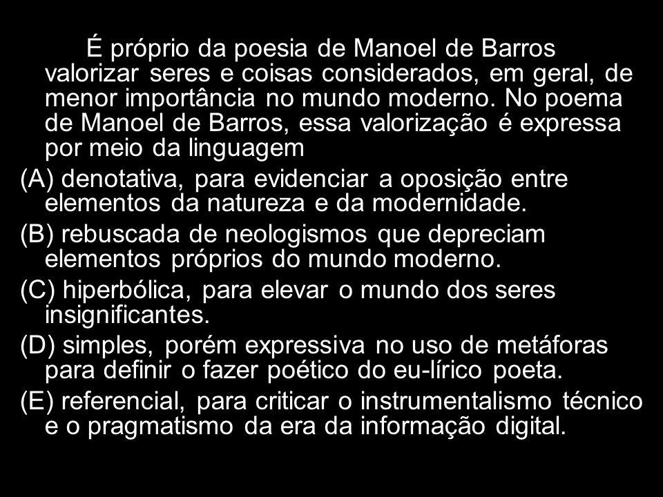 É próprio da poesia de Manoel de Barros valorizar seres e coisas considerados, em geral, de menor importância no mundo moderno. No poema de Manoel de