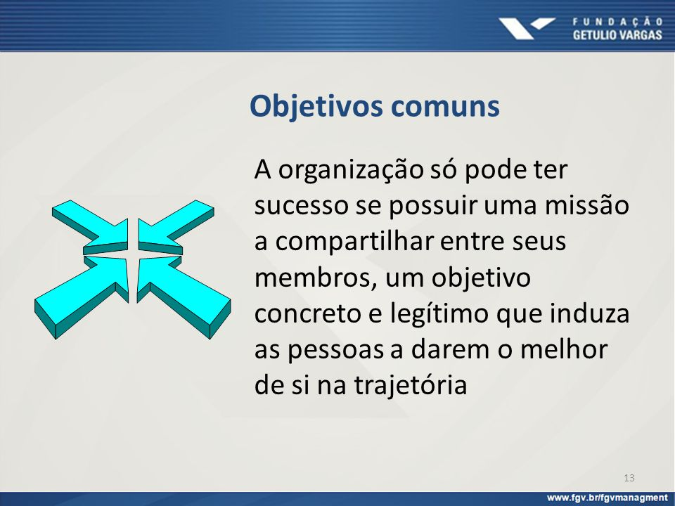 13 Objetivos comuns A organização só pode ter sucesso se possuir uma missão a compartilhar entre seus membros, um objetivo concreto e legítimo que ind