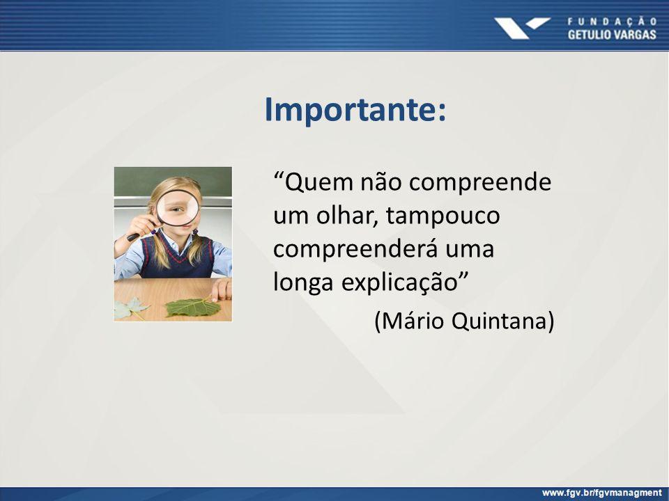 Importante: Quem não compreende um olhar, tampouco compreenderá uma longa explicação (Mário Quintana)