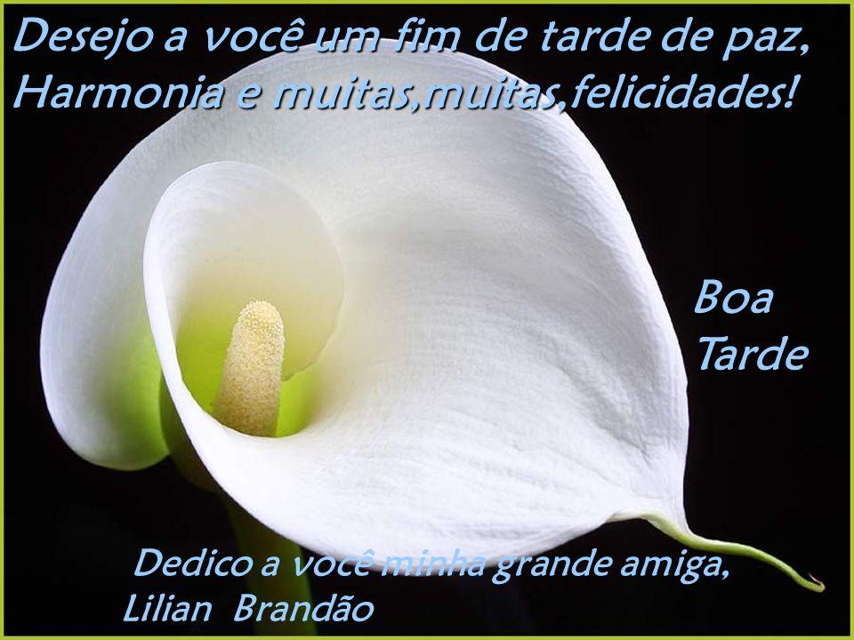 Desejo a você um fim de tarde de paz, Harmonia e muitas,muitas,felicidades.