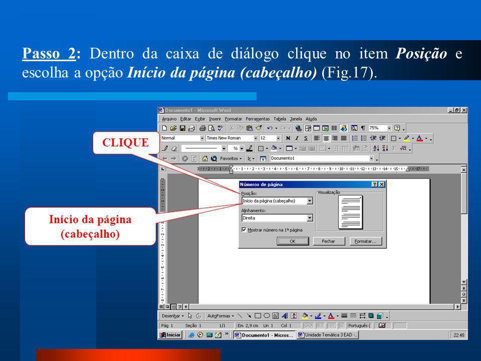 CLIQUE Passo 1: Clique no menu Inserir / Número de páginas (Fig.16).