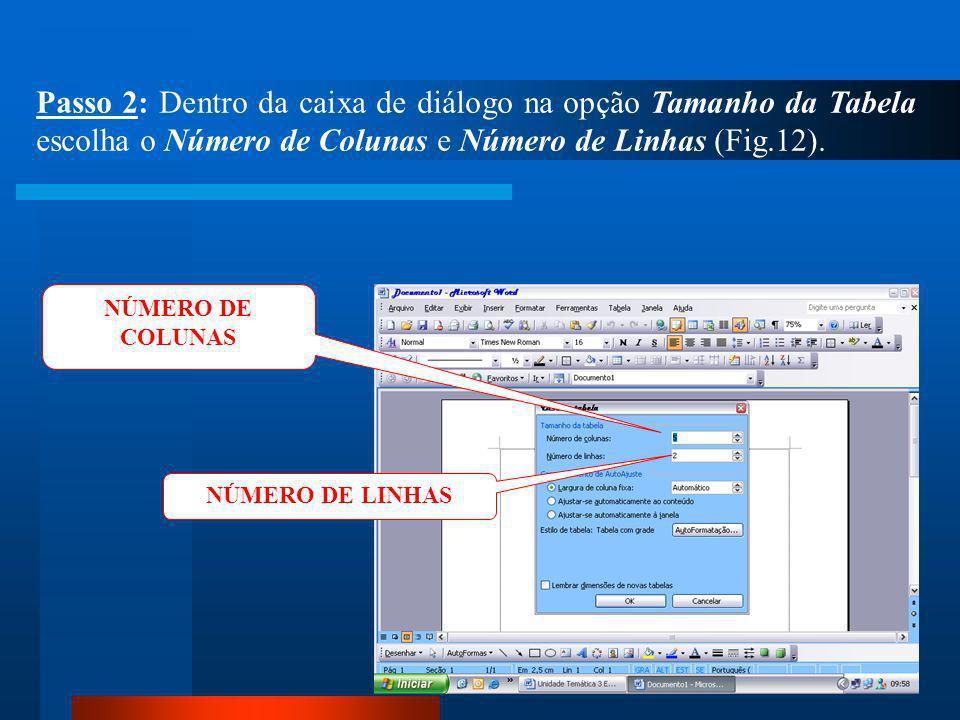 CLIQUE Passo 1: Clique no menu Tabela / Inserir / Tabela (Fig.11).