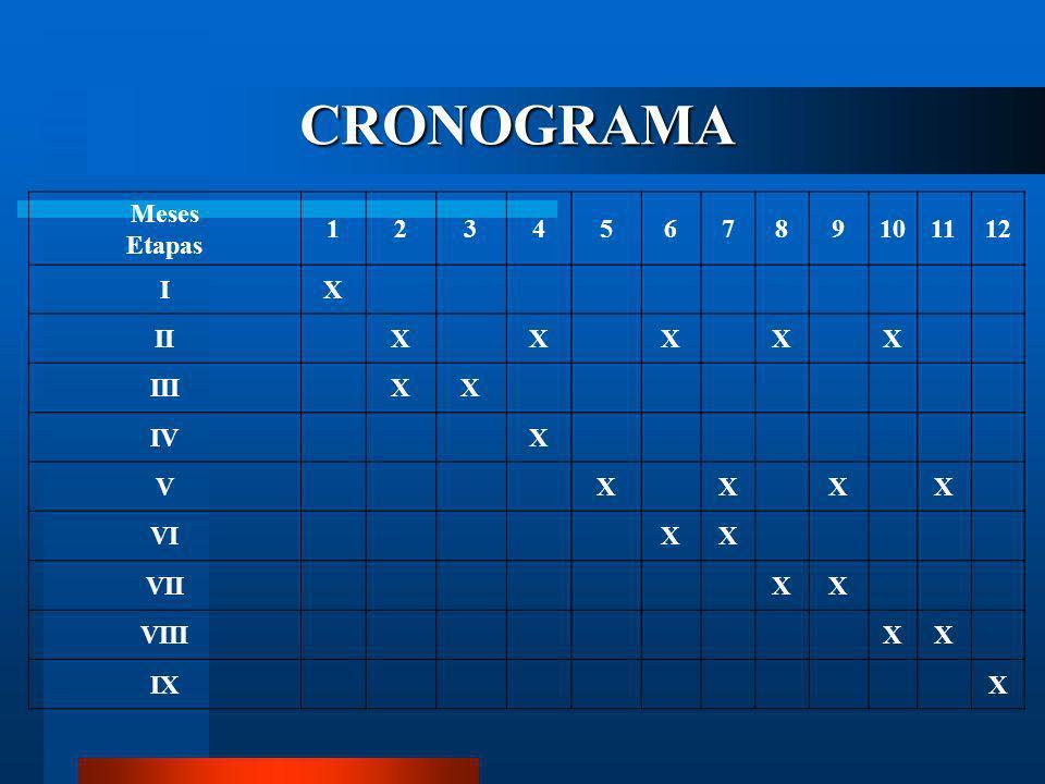 CRONOGRAMA A seguir exemplos de como montar um cronograma: Etapa I:escolha do assunto e delimitação do tema; Etapa II:revisão da bibliografia; Etapa I