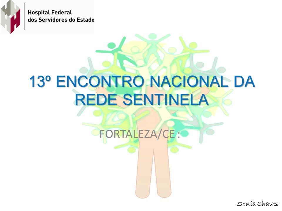 13º ENCONTRO NACIONAL DA REDE SENTINELA FORTALEZA/CE : Sonia Chaves