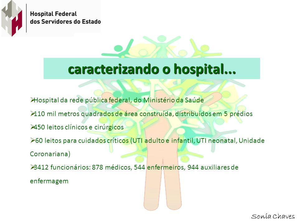 Sonia Chaves caracterizando o hospital... Hospital da rede pública federal, do Ministério da Saúde 110 mil metros quadrados de área construída, distri