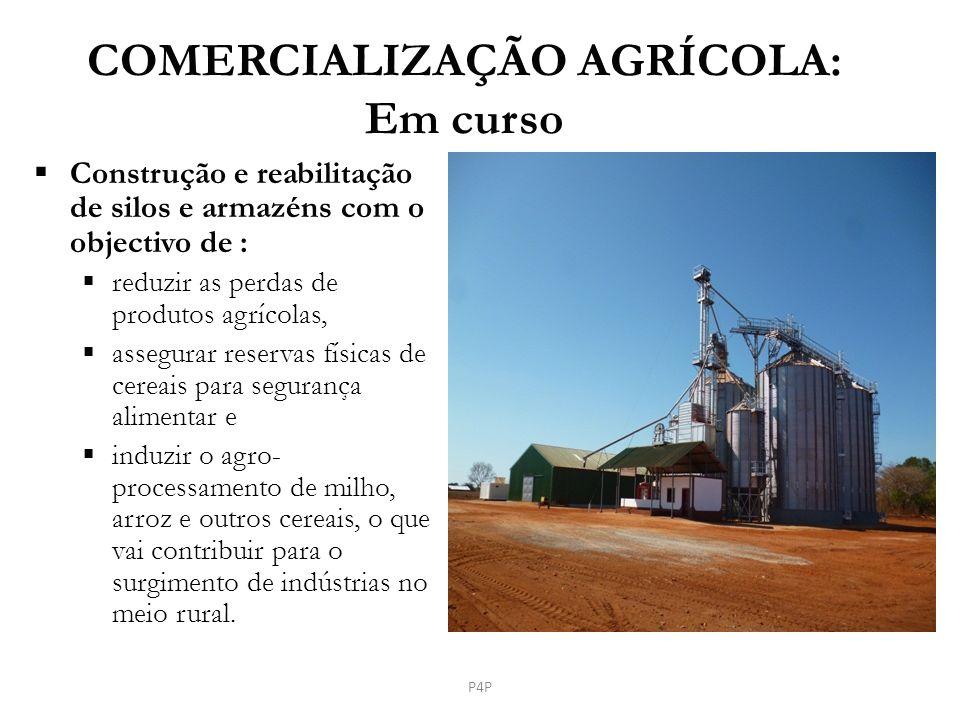 COMERCIALIZAÇÃO AGRÍCOLA: Em curso Construção e reabilitação de silos e armazéns com o objectivo de : reduzir as perdas de produtos agrícolas, assegur