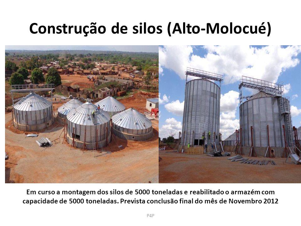Construção de silos (Alto-Molocué) Em curso a montagem dos silos de 5000 toneladas e reabilitado o armazém com capacidade de 5000 toneladas. Prevista