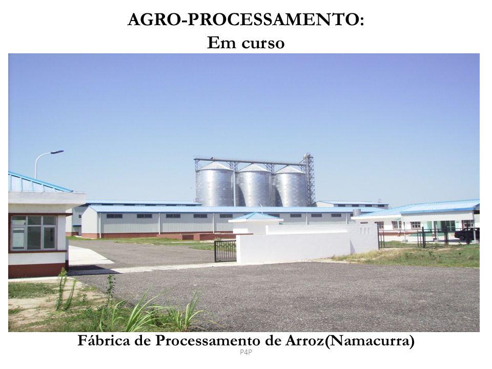 Fábrica de Processamento de Arroz(Namacurra) AGRO-PROCESSAMENTO: Em curso P4P