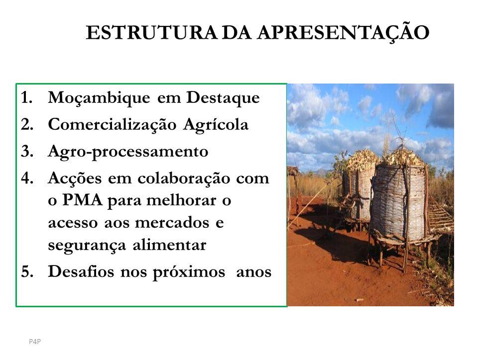 ESTRUTURA DA APRESENTAÇÃO 1.Moçambique em Destaque 2.Comercialização Agrícola 3.Agro-processamento 4.Acções em colaboração com o PMA para melhorar o a