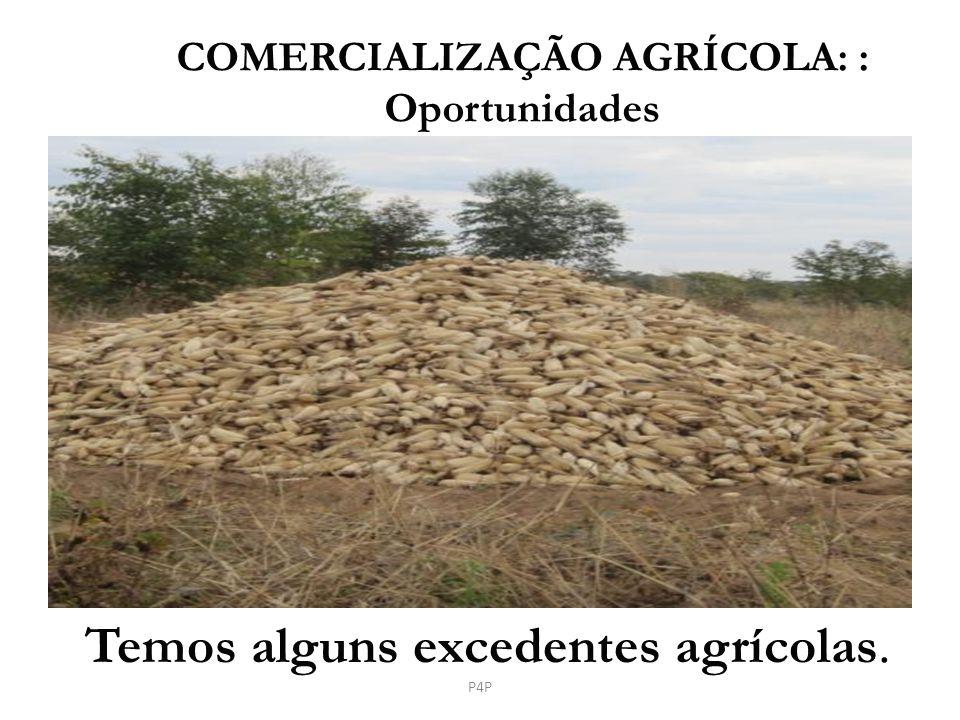 Temos alguns excedentes agrícolas. COMERCIALIZAÇÃO AGRÍCOLA: : Oportunidades P4P