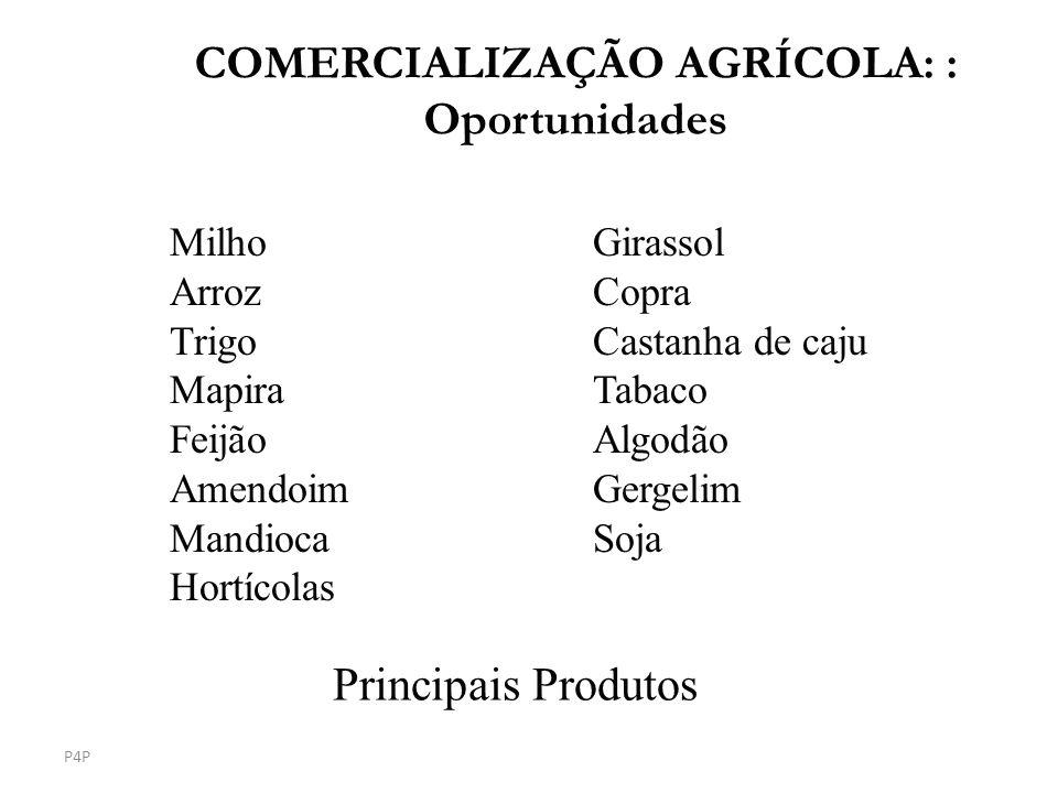 Principais Produtos MilhoGirassol ArrozCopra TrigoCastanha de caju MapiraTabaco Feijão Algodão Amendoim Gergelim MandiocaSoja Hortícolas P4P COMERCIAL