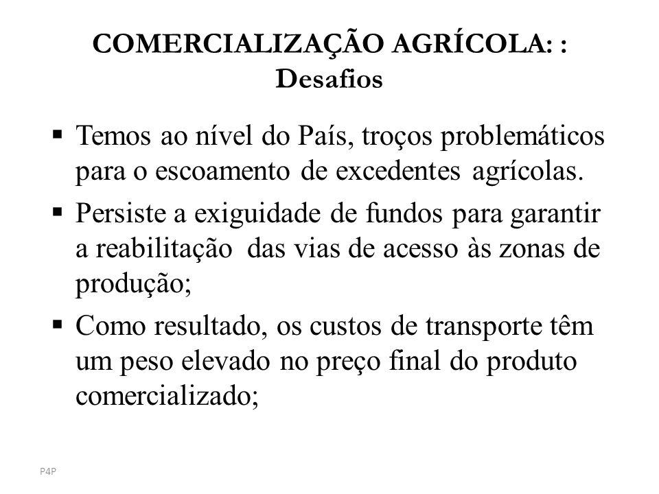 Temos ao nível do País, troços problemáticos para o escoamento de excedentes agrícolas. Persiste a exiguidade de fundos para garantir a reabilitação d