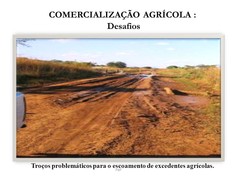 COMERCIALIZAÇÃO AGRÍCOLA : Desafios Troços problemáticos para o escoamento de excedentes agrícolas. P4P