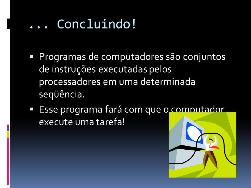 ... Concluindo! Programas de computadores são conjuntos de instruções executadas pelos processadores em uma determinada seqüência. Esse programa fará
