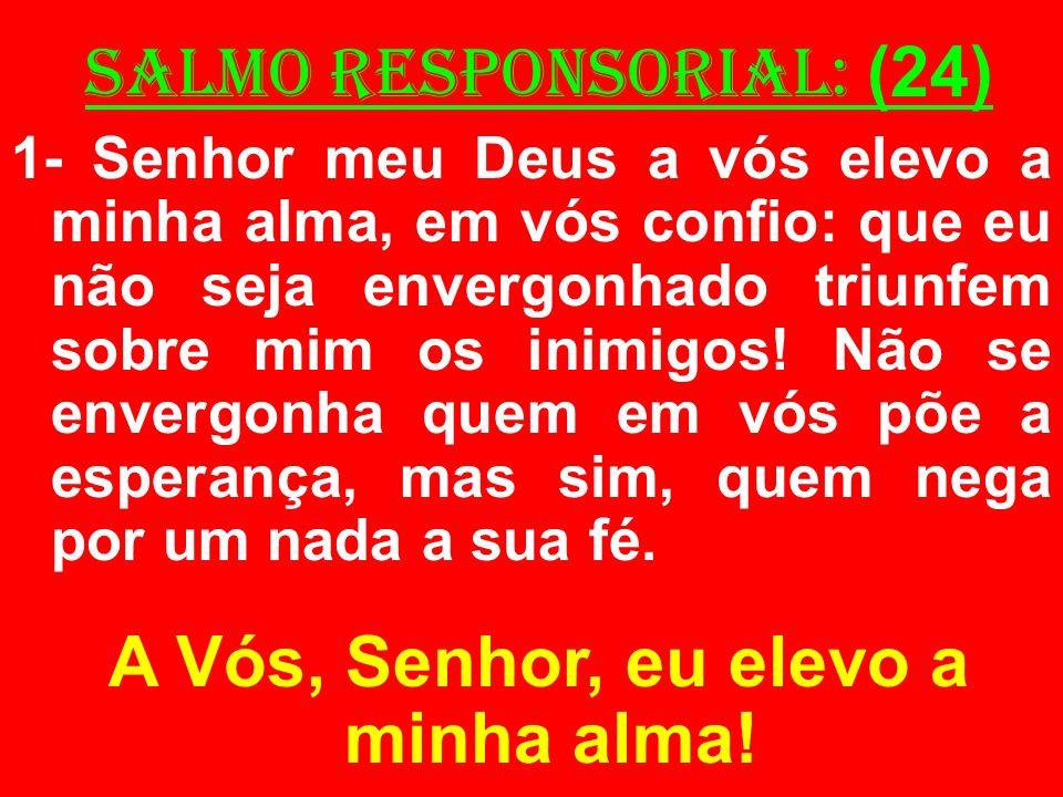 salmo responsorial: (24) 1- Senhor meu Deus a vós elevo a minha alma, em vós confio: que eu não seja envergonhado triunfem sobre mim os inimigos! Não