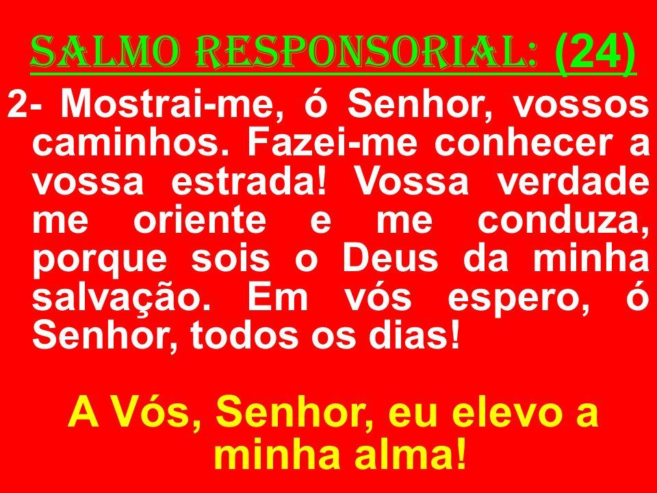 salmo responsorial: (24) 2- Mostrai-me, ó Senhor, vossos caminhos. Fazei-me conhecer a vossa estrada! Vossa verdade me oriente e me conduza, porque so