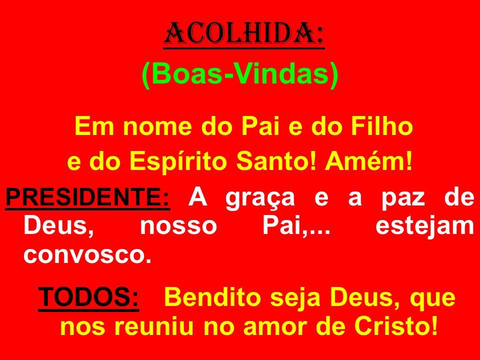 ACOLHIDA: (Boas-Vindas) Em nome do Pai e do Filho e do Espírito Santo! Amém! PRESIDENTE: A graça e a paz de Deus, nosso Pai,... estejam convosco. TODO