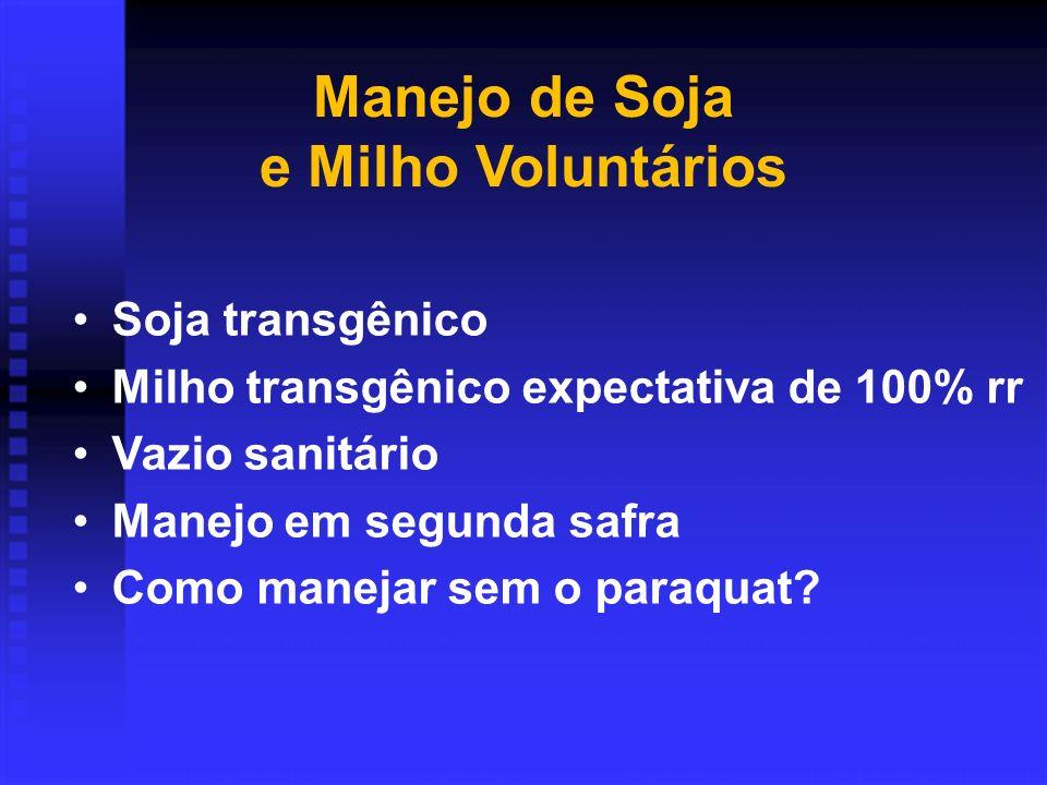 Manejo de Soja e Milho Voluntários Soja transgênico Milho transgênico expectativa de 100% rr Vazio sanitário Manejo em segunda safra Como manejar sem o paraquat?