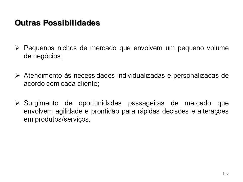 109 Outras Possibilidades Pequenos nichos de mercado que envolvem um pequeno volume de negócios; Atendimento às necessidades individualizadas e person
