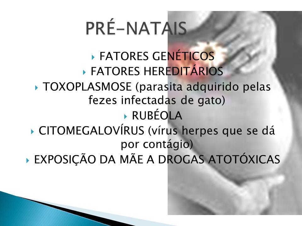 FATORES GENÉTICOS FATORES HEREDITÁRIOS TOXOPLASMOSE (parasita adquirido pelas fezes infectadas de gato) RUBÉOLA CITOMEGALOVÍRUS (vírus herpes que se dá por contágio) EXPOSIÇÃO DA MÃE A DROGAS ATOTÓXICAS