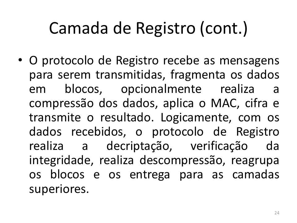 Camada de Registro (cont.) O protocolo de Registro recebe as mensagens para serem transmitidas, fragmenta os dados em blocos, opcionalmente realiza a