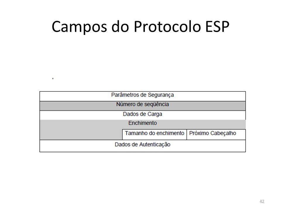 Campos do Protocolo ESP 42