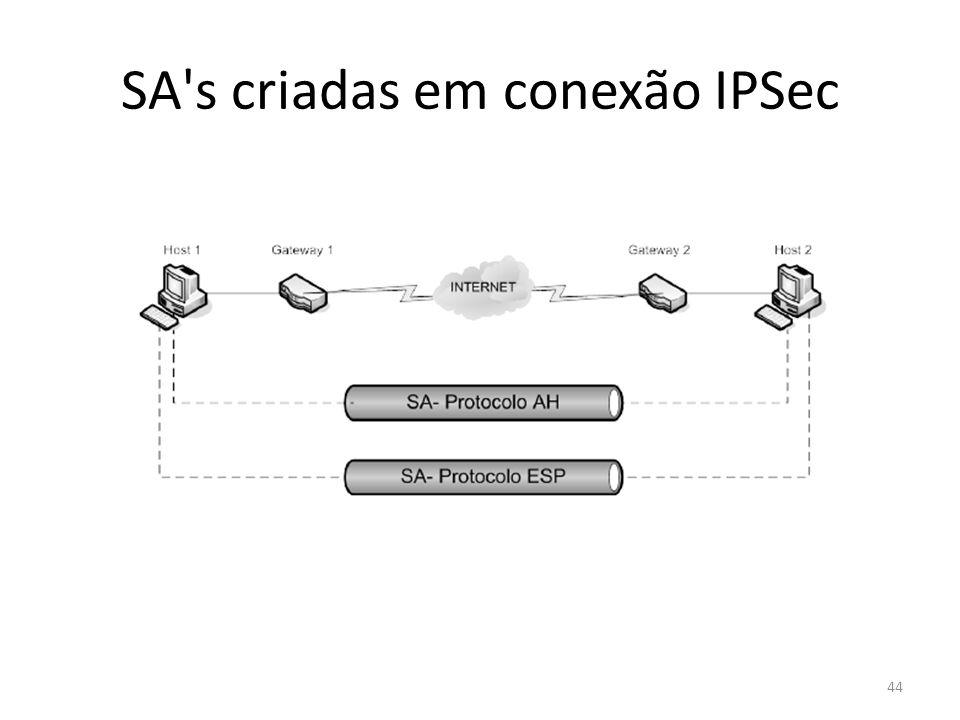 SA's criadas em conexão IPSec 44