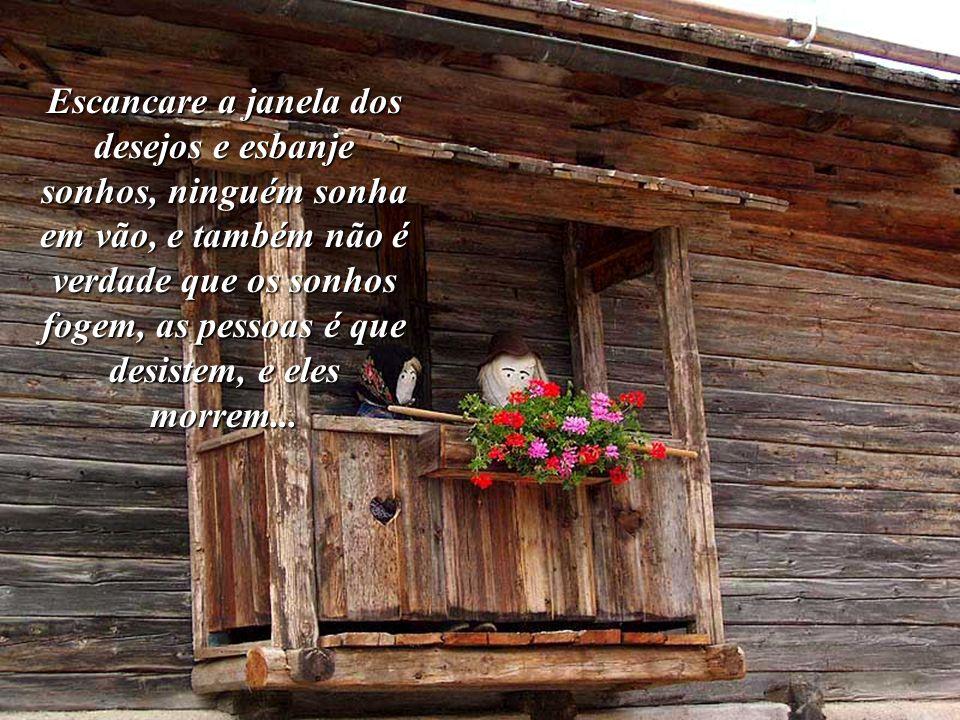Escancare a janela dos desejos e esbanje sonhos, ninguém sonha em vão, e também não é verdade que os sonhos fogem, as pessoas é que desistem, e eles morrem...