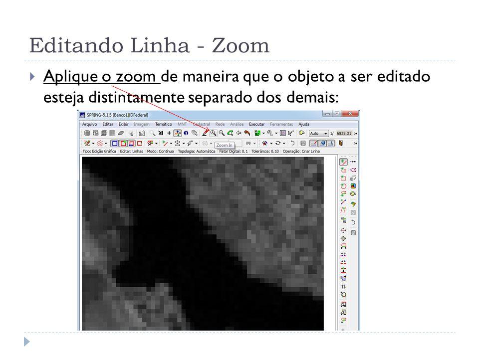 Editando Linha - Zoom Aplique o zoom de maneira que o objeto a ser editado esteja distintamente separado dos demais: