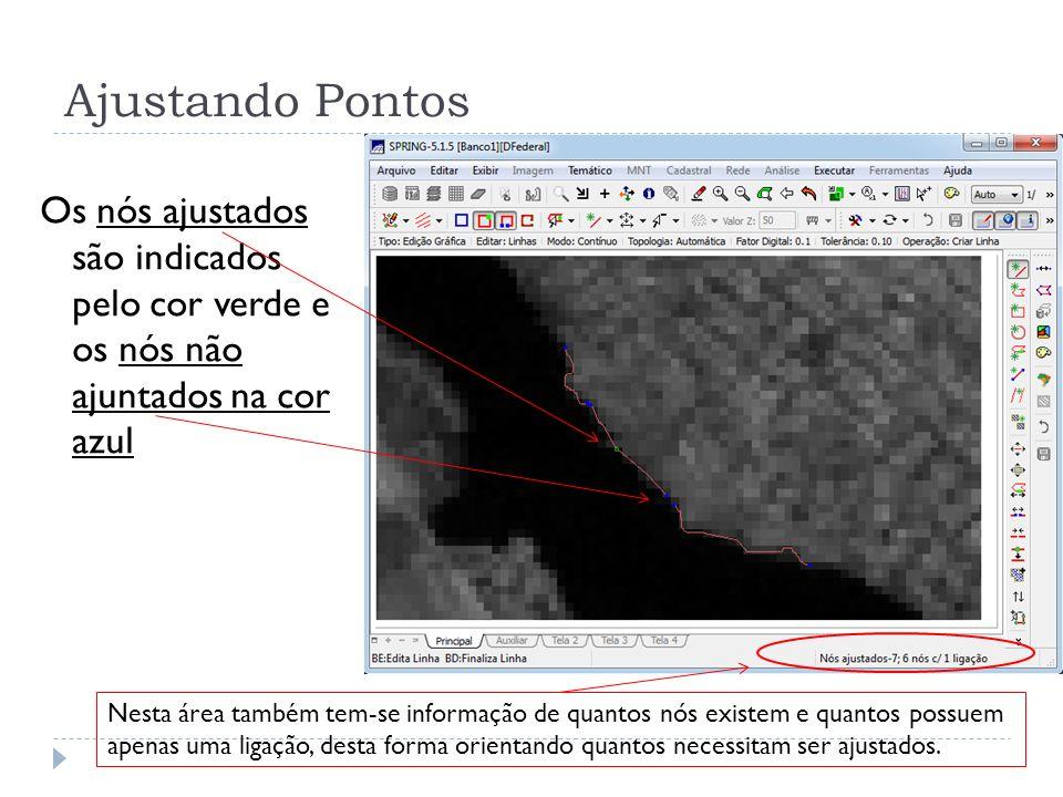 Ajustando Pontos Os nós ajustados são indicados pelo cor verde e os nós não ajuntados na cor azul Nesta área também tem-se informação de quantos nós e