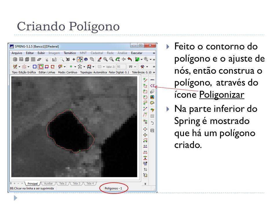 Criando Polígono Feito o contorno do polígono e o ajuste de nós, então construa o polígono, através do ícone Poligonizar Na parte inferior do Spring é