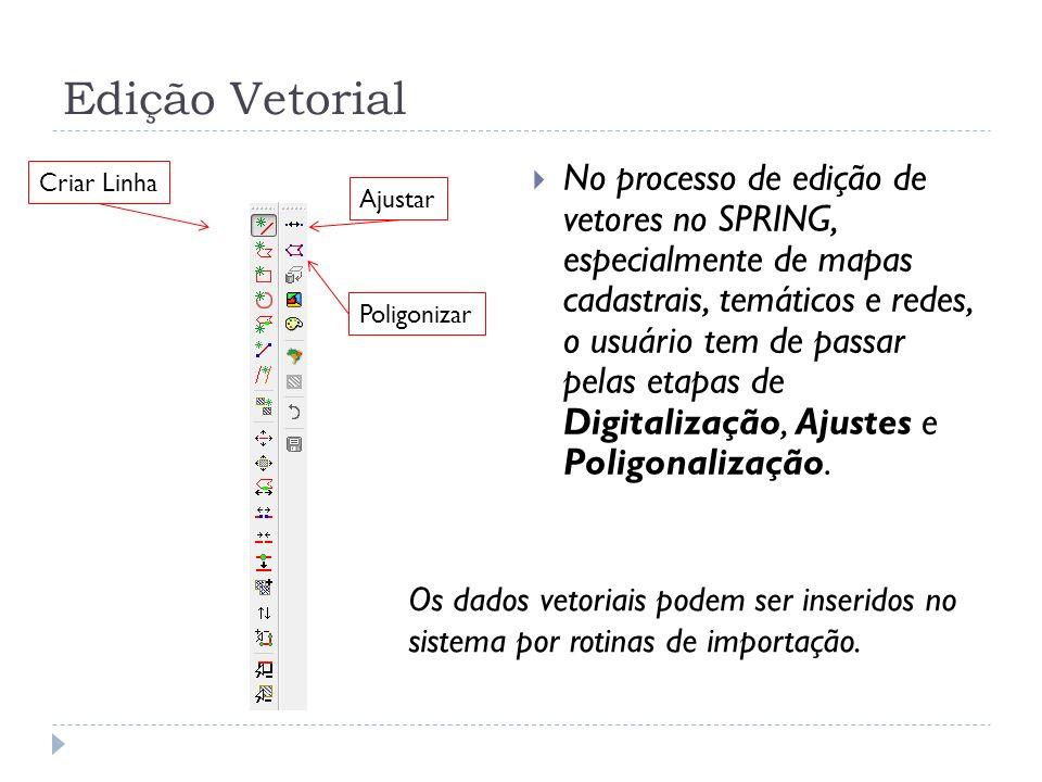 Edição Vetorial No processo de edição de vetores no SPRING, especialmente de mapas cadastrais, temáticos e redes, o usuário tem de passar pelas etapas
