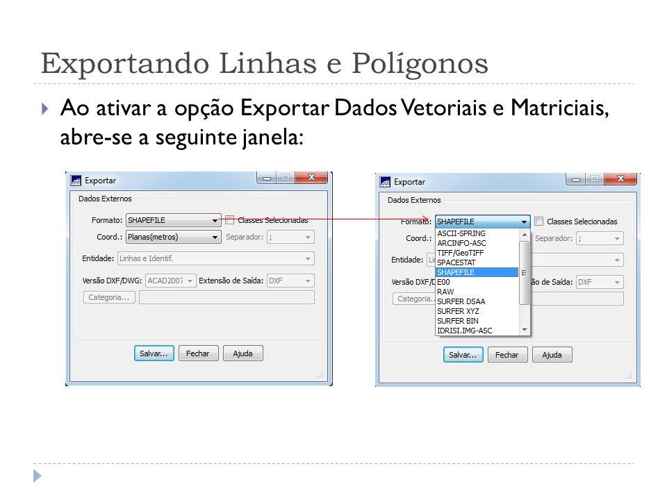 Exportando Linhas e Polígonos Ao ativar a opção Exportar Dados Vetoriais e Matriciais, abre-se a seguinte janela: